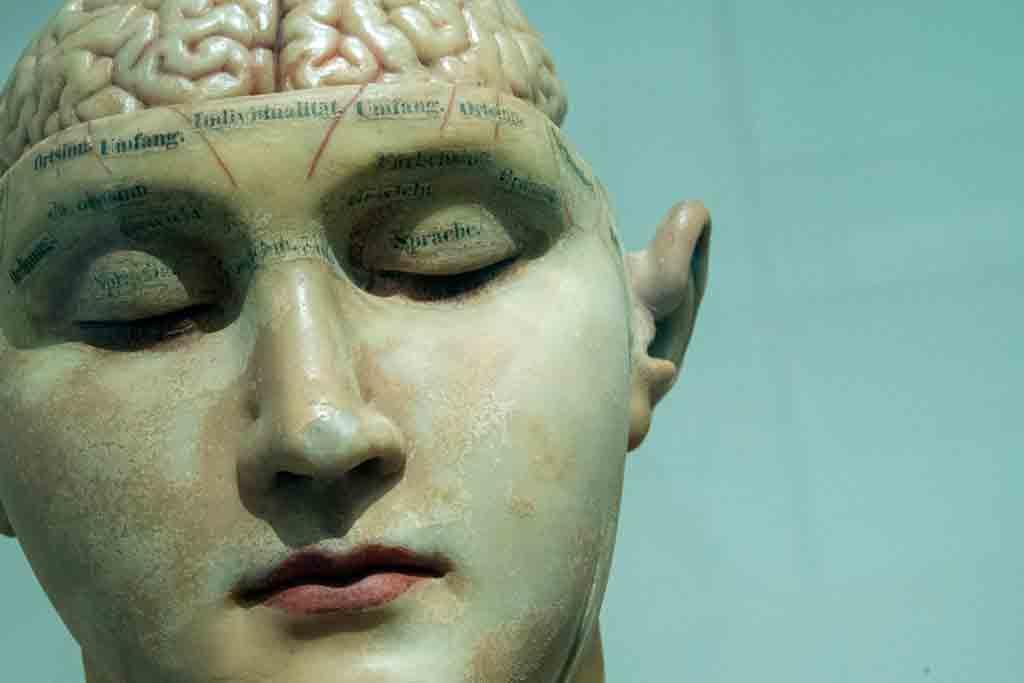 beyin implant uzmani